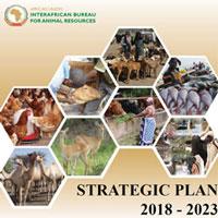strategic-plan-2018-2013